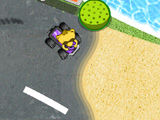 Play Racoon racing now !
